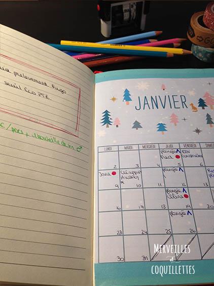 Bullet journal de Merveilles et coquillettes : planning mensuel